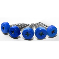 Blue Poly Top Screws (Pack 12)