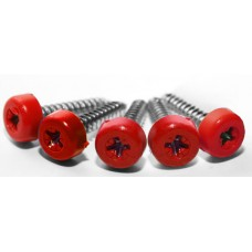 Poly Top Screws Pack 12)
