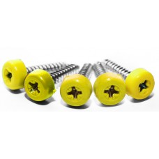 Poly Top Screws (Pack 12)